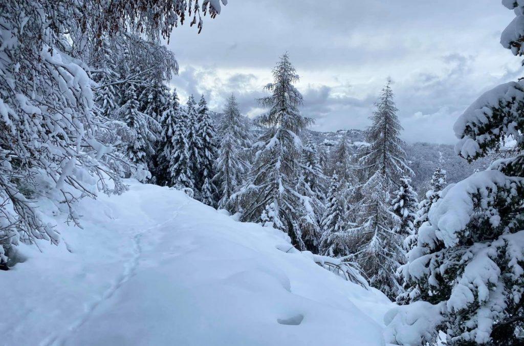 monte bondone, neve