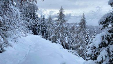 Photo of Neve, neve e ancora neve. Equipaggiamoci di prudenza e buon senso