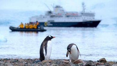 Photo of Il Covid-19 è arrivato anche in Antartide