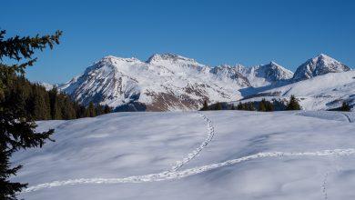 Photo of La neve chiama ma serve prudenza. 10 consigli del SASU per escursioni in sicurezza
