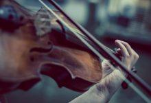 """Photo of """"Echi del Legno"""". In mostra i paesaggi sonori delle Dolomiti"""
