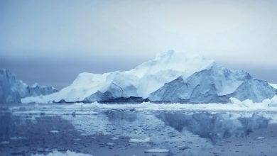 Photo of Cambiamenti climatici, ambiente e popoli nativi: con il Trento Film Festival si viaggia in Groenlandia.