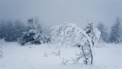 Photo of In arrivo neve e gelo. Resta alto il pericolo valanghe
