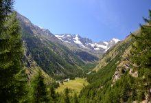Photo of Parco Nazionale del Gran Paradiso