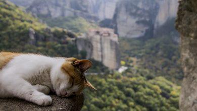 Photo of Sonno e montagna, tutto quello che c'è da sapere per dormire sonni tranquilli anche in quota