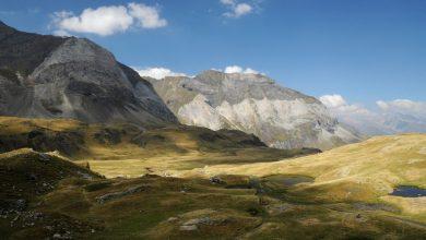Photo of C'era una volta lo stambecco dei Pirenei