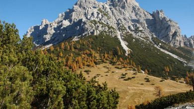 Photo of Parco Nazionale delle Dolomiti Bellunesi