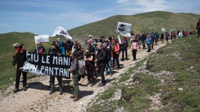 Photo of Brutte notizie dai Pantani di Accumoli