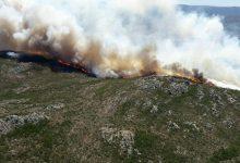 Photo of I grandi incendi si combattono con la prevenzione