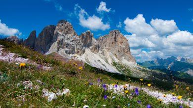 Photo of Cibo, benessere, emozioni e servizi: quanto vale la natura alpina?