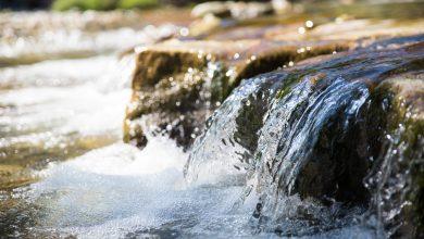Photo of L'ultima goccia d'acqua: un bene prezioso in rifugio