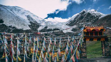 Photo of Scoperti nei ghiacci del Tibet antichi virus sconosciuti alla scienza
