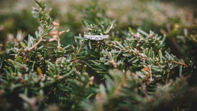 Photo of Organizza escursione in Dolomiti per chiedere alla ragazza di sposarlo e si perdono