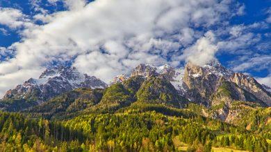 Photo of Vette alpine sempre più verdi a causa del cambiamento climatico