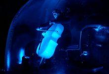 violoncello, presena, n-ice cello